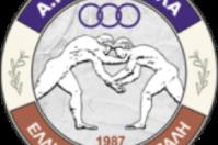 Logo APS Palis Trikalon Final 01
