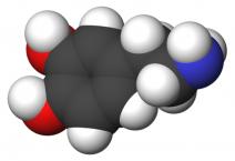ντοπαμινη 1