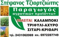 tziortzioths-lygaria
