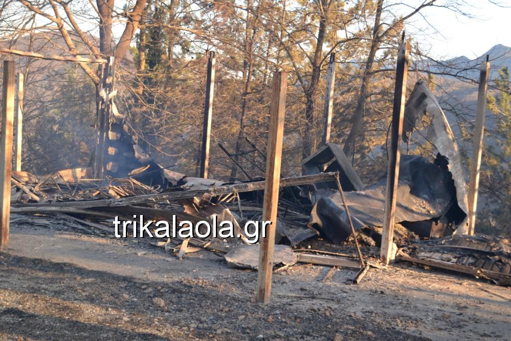 fotia loggies pylh trikalon 2019 10 - Μεγάλη καταστροφική φωτιά σε ορεινή περιοχή του δήμου Πύλης Τρικάλων.