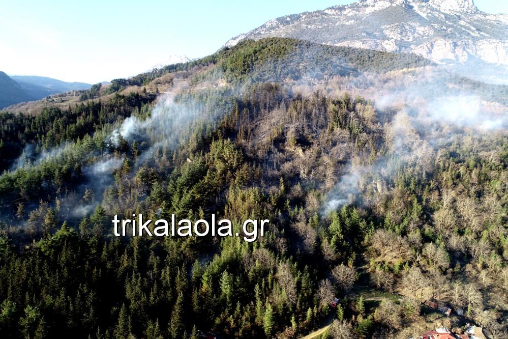 fotia loggies pylh trikalon 2019 2 - Μεγάλη καταστροφική φωτιά σε ορεινή περιοχή του δήμου Πύλης Τρικάλων.
