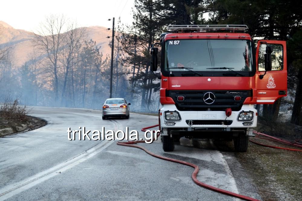 fotia loggies pylh trikalon 2019 21 - Μεγάλη καταστροφική φωτιά σε ορεινή περιοχή του δήμου Πύλης Τρικάλων.