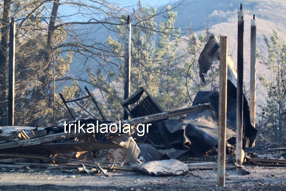 fotia loggies pylh trikalon 2019 24 - Μεγάλη καταστροφική φωτιά σε ορεινή περιοχή του δήμου Πύλης Τρικάλων.