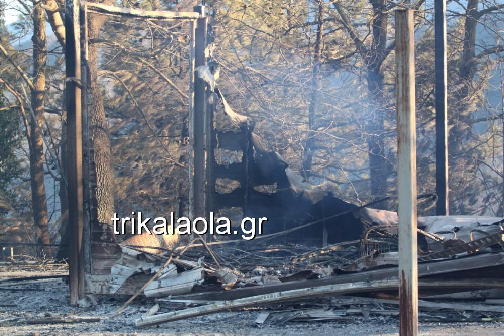 fotia loggies pylh trikalon 2019 30 - Μεγάλη καταστροφική φωτιά σε ορεινή περιοχή του δήμου Πύλης Τρικάλων.