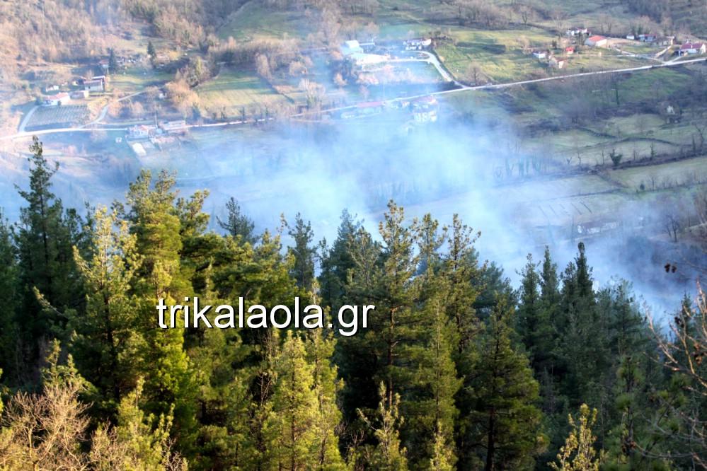 fotia loggies pylh trikalon 2019 47 - Μεγάλη καταστροφική φωτιά σε ορεινή περιοχή του δήμου Πύλης Τρικάλων.