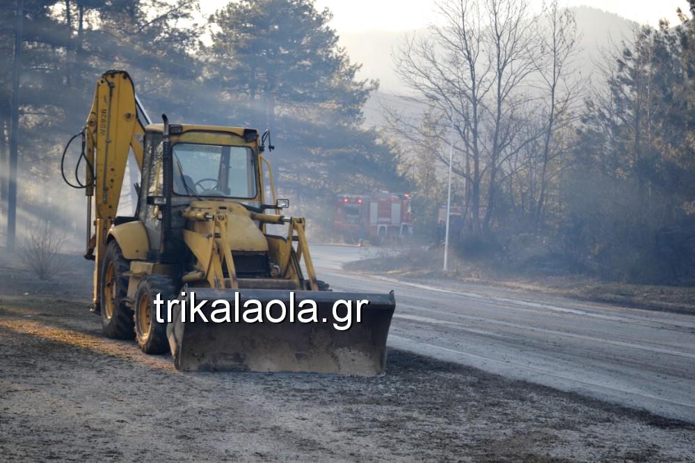 fotia loggies pylh trikalon 2019 9 - Μεγάλη καταστροφική φωτιά σε ορεινή περιοχή του δήμου Πύλης Τρικάλων.